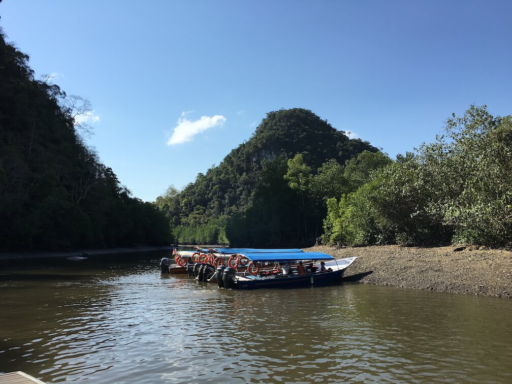 Mangrove River Cruise